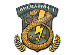 Badge of Service