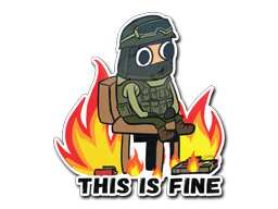 This Is Fine (CT)