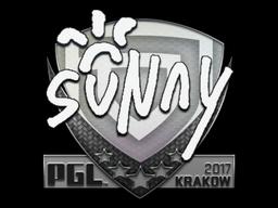 suNny   Krakow 2017