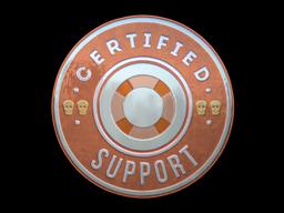 Sticker | Support (Foil)