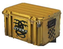 Operation Hydra Case