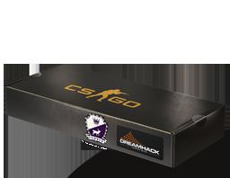 DreamHack 2014 Cobblestone Souvenir Package