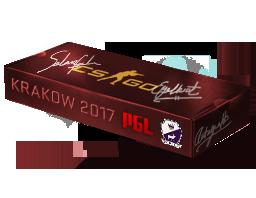 Krakow 2017 Cobblestone Souvenir Package