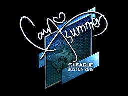 Sticker | Summer (Foil) | Boston 2018