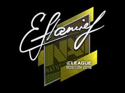Sticker   flamie   Boston 2018