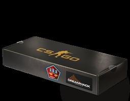 DreamHack 2014 Mirage Souvenir Package