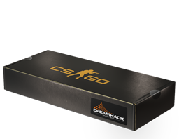 DreamHack 2013 Souvenir Package